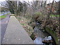 SP0380 : Griffin's Brook, Bristol Road South with Shopping Trolley by Roy Hughes