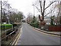 SP0381 : Cob Lane Bridge Over Griffin's Brook by Roy Hughes