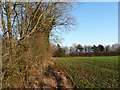 TL0496 : Edge of large field, south of Apethorpe Road by Christine Johnstone