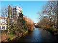 TQ1868 : Hogsmill River and Kingston University by Des Blenkinsopp