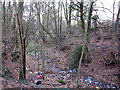 SJ6468 : Flytipped stream by Stephen Craven
