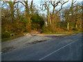 SU8206 : The driveway to Robin Hill Farm by Shazz
