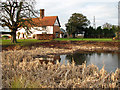 TM0743 : Pond by College Farm, Hintlesham by Evelyn Simak
