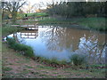 SP2980 : Pond, Allesley Park by E Gammie