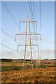 NT5144 : Power lines and pylons at Woodheads Hill by Walter Baxter