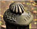 J4681 : Francis Morton fencepost, Crawfordsburn (2) by Albert Bridge