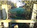 SJ6756 : Foot path close to Leighton Brook on Leighton Grange side of the Brook by  Moston-Harratt