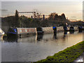 SJ7789 : Narrowboats at Timperley by David Dixon