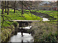 SJ7788 : Timperley Brook by David Dixon