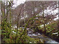 NN6148 : Dreich wintry banks of Allt Bhrachain above Glen Lyon by ian shiell