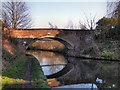 SJ7588 : Bridgewater Canal, Seamon's Moss Bridge by David Dixon