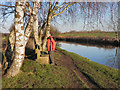 SJ7488 : Cheshire Canal Ring Walk, Dunham by David Dixon