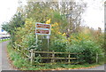 SU8755 : Blackwater Valley Path off Coleford Bridge Rd by N Chadwick