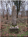 TL7791 : Stump Cross, Mount Ephraim by Hugh Venables