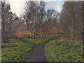 SD7705 : Outwood Country Park, A Choice of Paths by David Dixon