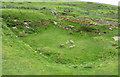 HU3620 : St Ninian's Church remains (4) from SE by Rob Farrow