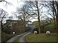 SD6394 : Bridge and farm access track over Chapel Beck, Howgill by Karl and Ali