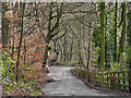 SD7914 : Wood Road Lane, Summerseat by David Dixon