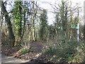 TQ5361 : Public bridleway near Shoreham by Malc McDonald
