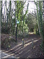 TQ5261 : Darent Valley Path, Shoreham by Malc McDonald