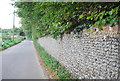 TM1349 : Flint Wall, Church Lane by N Chadwick