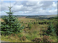 SN7851 : Moorland south-east of Soar-y-Mynydd, Ceredigion by Roger  Kidd