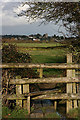 ST4226 : Langport from the footpath to Drayton : Week 4