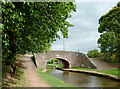 SJ8935 : Turnover Bridge near Meaford, Staffordshire by Roger  Kidd