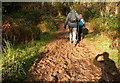 SS9140 : Bridleway following the River Avill by Graham Horn