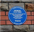 Photo of Treorchy Male Choir blue plaque
