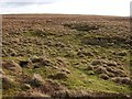 SX6084 : Moorland on Black Hill by Derek Harper