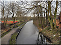 SJ9585 : Macclesfield Canal by David Dixon