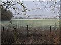 TL4562 : Fields by Milton Tip by Hugh Venables