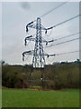 TQ4461 : Pylon near Cuckoo Wood by Robin Webster