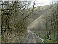 SK2174 : Valley track, upper Coombs Dale by Andrew Hill