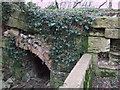 SU1997 : Culvert, disused Thames and Severn Canal by Vieve Forward