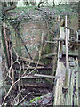 SU1997 : Derelict lock gate, disused Thames and Severn Canal near Dudgrove Farm by Vieve Forward