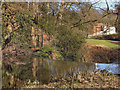 SJ8382 : River Bollin, Quarry Bank Mill by David Dixon
