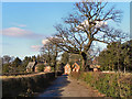 SJ8383 : Apprentice Lane, Styal by David Dixon