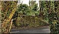 J4843 : Old railway, Downpatrick (3 of 4) by Albert Bridge