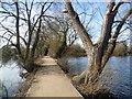 TQ5473 : Darent Valley Path crossing Brooklands Lakes : Week 8