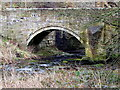 NZ3174 : The Old Stone Bridge, Holywell Dene by Christine Westerback