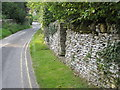 SP1106 : Narrow lane in Bibury by Philip Jeffrey