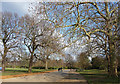 TQ3373 : Carriage Drive, Dulwich Park (2) by Stephen Richards