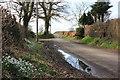SJ8770 : Mill House Farm entrance Marton Lane, Gawsworth by Peter Turner