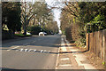 SP0484 : Somerset Road, Edgbaston by Phil Champion