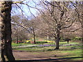 TQ2979 : Spring in St James's Park by Christopher Hilton