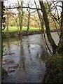 SX3784 : River Tamar by Derek Harper