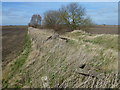 TF2911 : Former railway line at Dowsdale Bank east of Crowland by Richard Humphrey