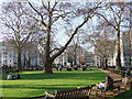 TQ2880 : Berkeley Square, Mayfair by PAUL FARMER